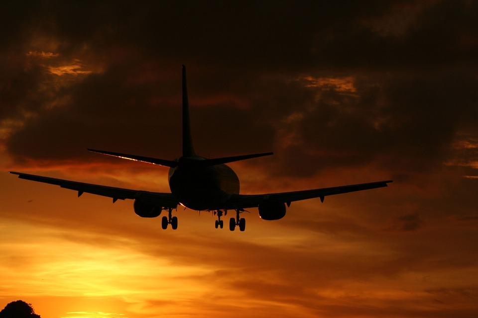 fly-897161_960_720